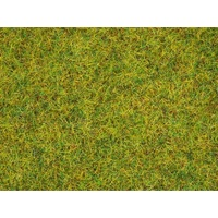Scatter Grass - Summer Meadow 20g
